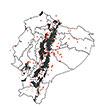 Checklist of the flower flies of Ecuador (Diptera, Syrphidae)