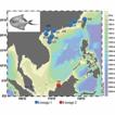 Pleistocene isolation caused by sea-level ...