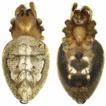 On nine species of the spider genus Eriovixia ...