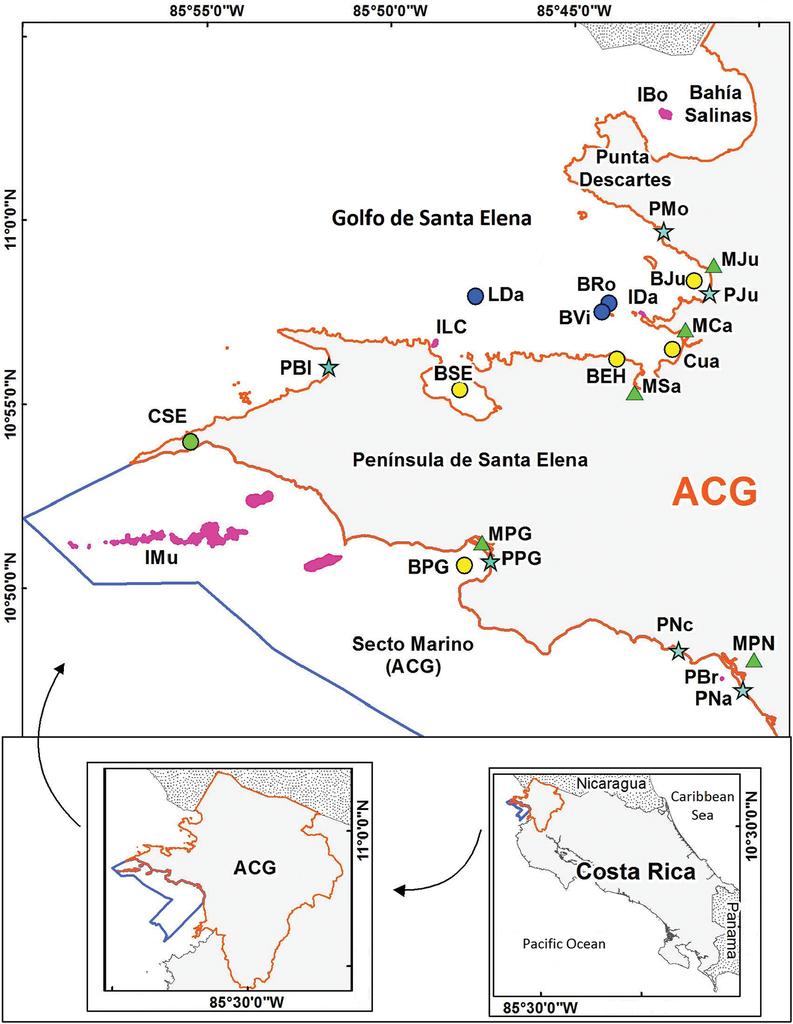 Marine biodiversity baseline for Área de Conservación Guanacaste, Costa Rica: published records.