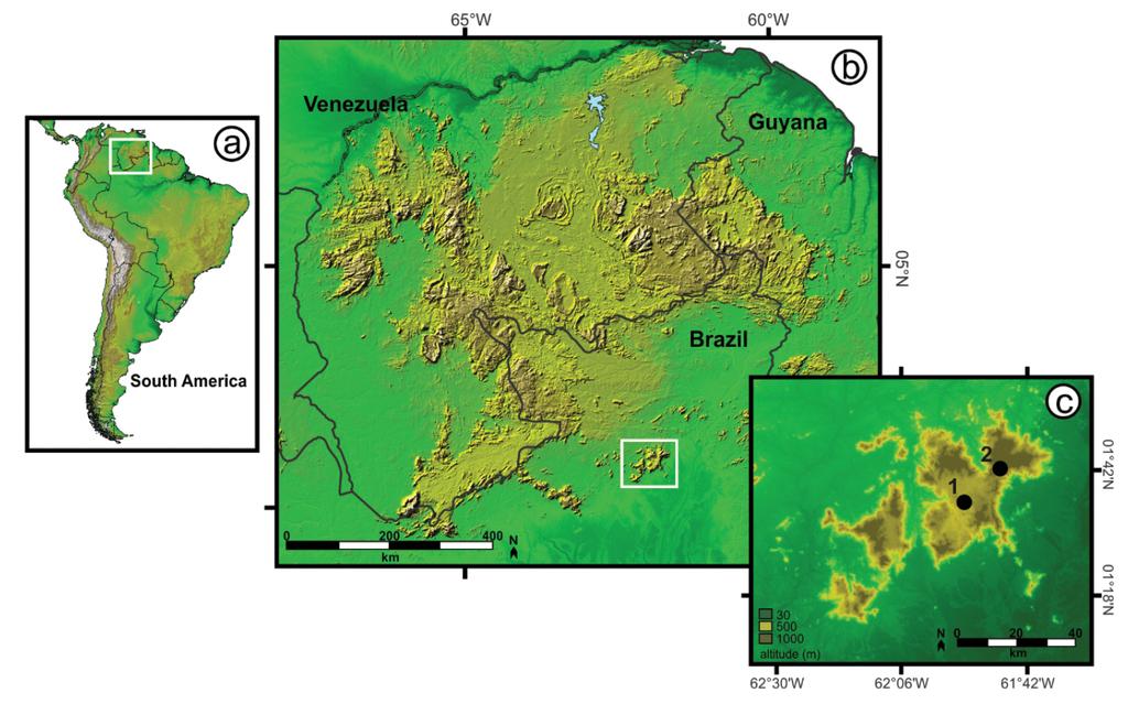 Integrative overview of the herpetofauna from serra da mocidade a figure 1 sciox Choice Image