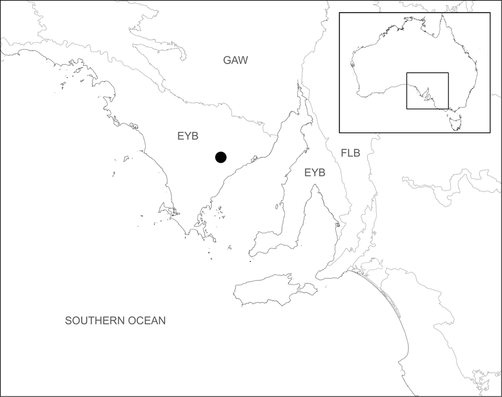 Conservation systematics of the shield-backed trapdoor