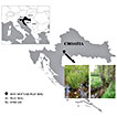 Spatial distribution and seasonal changes of mayflies (Insecta, Ephemeroptera) in a Western Balkan peat bog