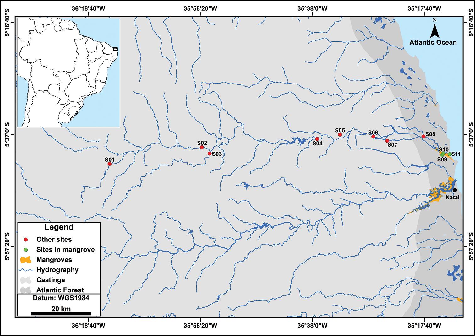 Ichthyofauna Of CearáMirim River Basin Rio Grande Do Norte State - Map of the rio grande river