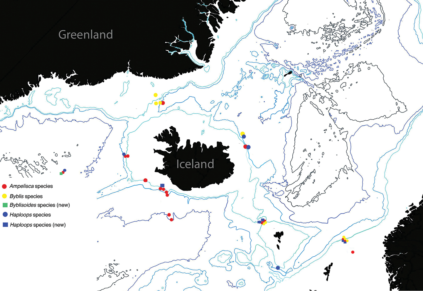 Ampeliscidae crustacea amphipoda from the iceage expeditions map to the distribution of species from icelandic waters in the genera of ampeliscidae highlighting the new species documented gumiabroncs Gallery