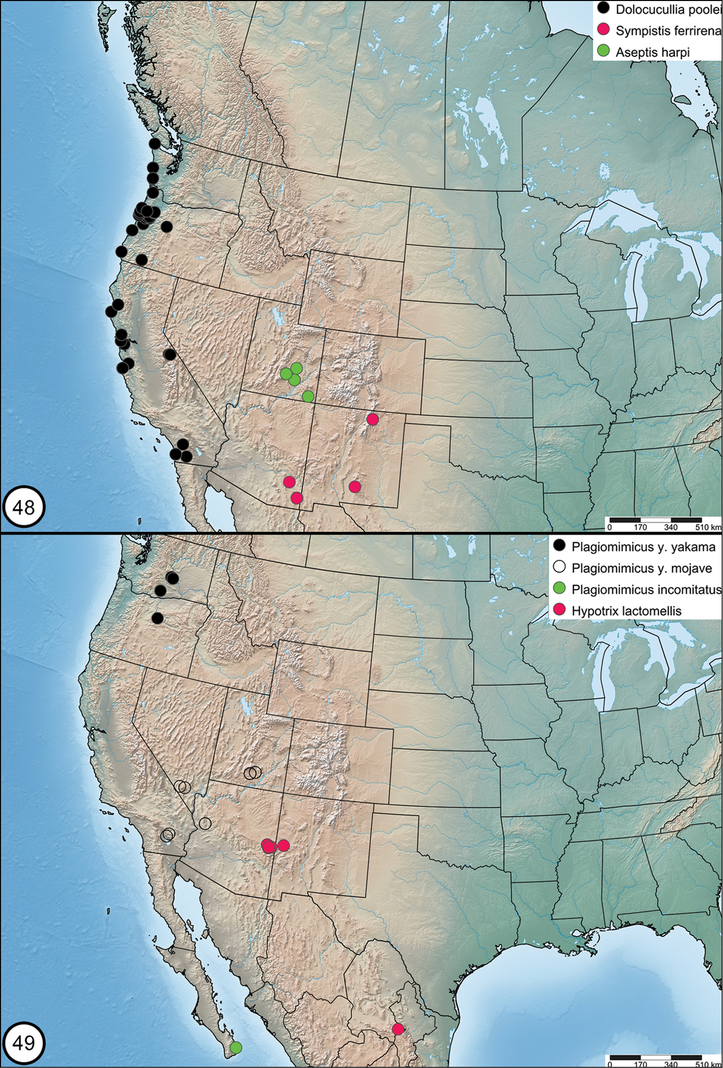Six new species and one new subspecies of noctuid moths from ...